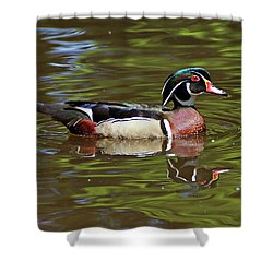 Shower Curtain featuring the photograph Wood Duck by Sandy Keeton