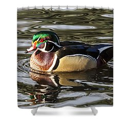 Shower Curtain featuring the photograph Wood Duck Swimming In Liquid Metal by Stephen Johnson