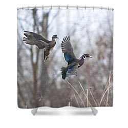 Wood Flight Shower Curtain
