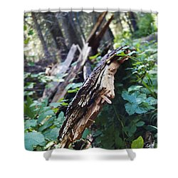 Wood In The Forest Shower Curtain