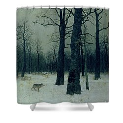 Wood In Winter Shower Curtain by Isaak Ilyic Levitan