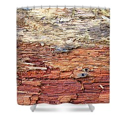 Shower Curtain featuring the photograph Wood by Milena Ilieva