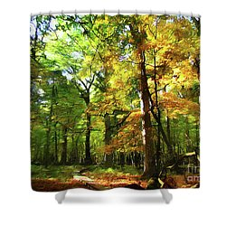 Wood Plank Trail Shower Curtain