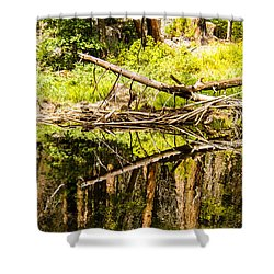 Wood Reflections Shower Curtain by Brian Williamson
