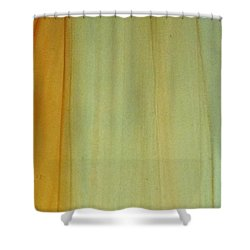 Wood Stain Shower Curtain