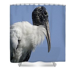 Wood Stork Portrail Shower Curtain