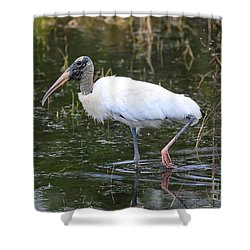 Wood Stork Through The Marsh Shower Curtain