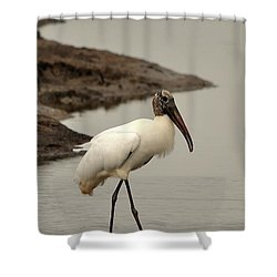 Wood Stork Walking Shower Curtain