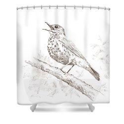 Wood Thrush Shower Curtain