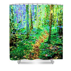 Wooded Trail Shower Curtain by Dave Martsolf
