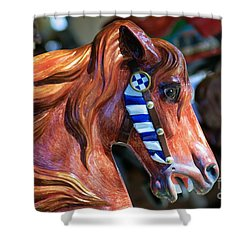 Wooden Horse Shower Curtain