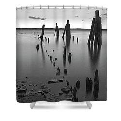 Wooden Soldiers Of The Hudson Monochrome Shower Curtain