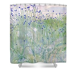 Woodford Park In Woodley Shower Curtain