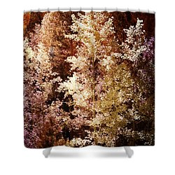 Woodland Beauty Shower Curtain by Joseph Frank Baraba