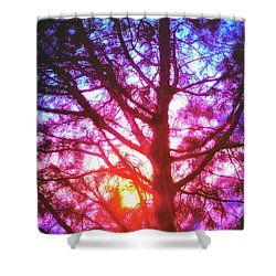 Woodland Cathedral Shower Curtain