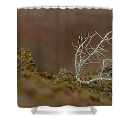 Woodland Coral Shower Curtain by JD Grimes