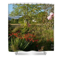 Woodland Garden In Early Autumn Shower Curtain