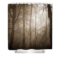 Woodland Glade 3 Shower Curtain