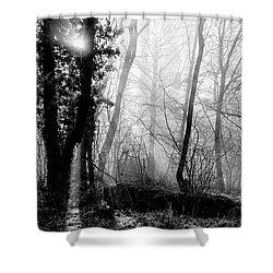 Woodland Glade  Shower Curtain