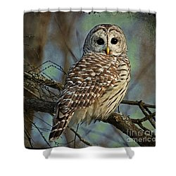 Woodland Goddess Shower Curtain by Heather King