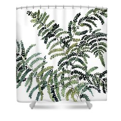 Woodland Maiden Fern Shower Curtain