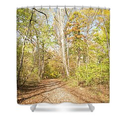 Woodland Path, Autumn, Montgomery County, Pennsylvania Shower Curtain
