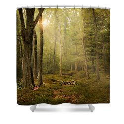 Shower Curtain featuring the photograph Woodland by Robin-Lee Vieira