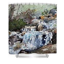 Woodland Stream Shower Curtain by Monte Toon