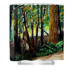 Woodland Trail Shower Curtain by Michelle Calkins