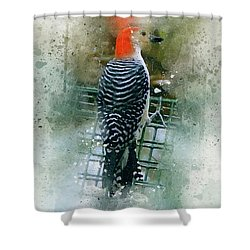 Woodpecker-2-a-8 Shower Curtain