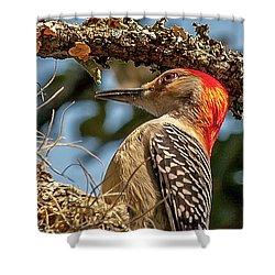 Woodpecker Closeup Shower Curtain
