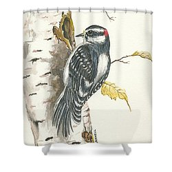 Shower Curtain featuring the painting Woodpecker by Darren Cannell