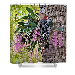 Woodpecker Heaven Shower Curtain