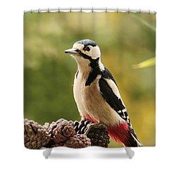 Woodpecker In Winter Shower Curtain by Heike Hultsch