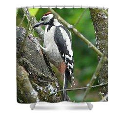 Woodpecker Shower Curtain by Valerie Ornstein