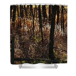 Woods - 2 Shower Curtain by Linda Shafer