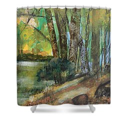 Woods In The Afternoon Shower Curtain by Robin Maria Pedrero