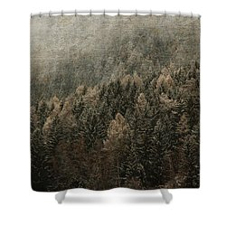 Woods In Winter Shower Curtain