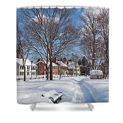 Shower Curtain featuring the photograph Woodstock Green by Susan Cole Kelly