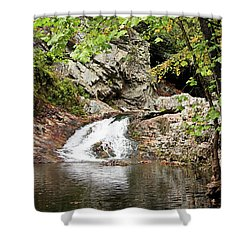 Shower Curtain featuring the photograph Woodsy Flow by Kristin Elmquist