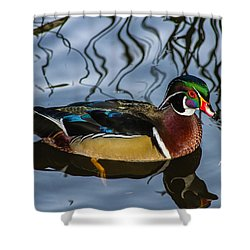 Woody Shower Curtain by Robert Hebert