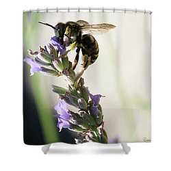 Shower Curtain featuring the photograph Wool Carder by Rasma Bertz