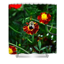 Shower Curtain featuring the photograph Worker Bee by Jesse Ciazza