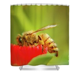 Shower Curtain featuring the photograph Worker Bee by Micah May