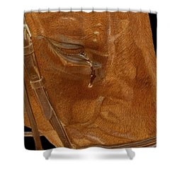 Workhorse Blues - Horse Painting Shower Curtain by Patricia Barmatz