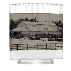 Shower Curtain featuring the photograph Working Cattle Barn by J L Zarek