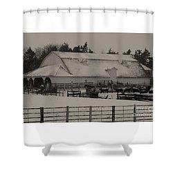 Working Cattle Barn Shower Curtain