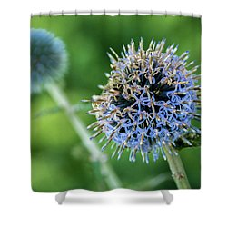 Shower Curtain featuring the photograph World Of Chaos by Bill Pevlor
