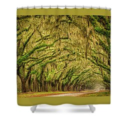Shower Curtain featuring the photograph Wormsloe Drive by Phyllis Peterson