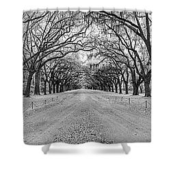 Shower Curtain featuring the photograph Wormsloe Pathway by Jon Glaser